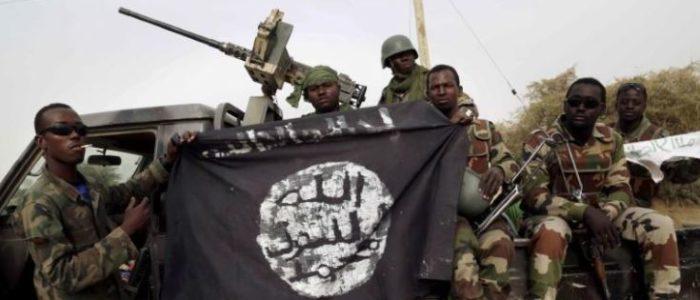 نيجيريا: المحادثات مع بوكو حرام تهدف إلى وقف دائم للقتال
