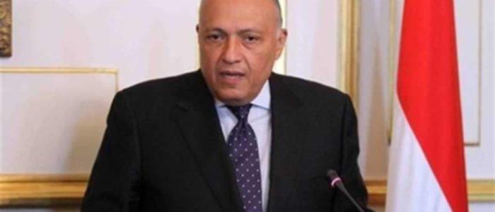 سامح شكري يؤكد لمسئول فيتنامى استعداد مصر لتعزيز الاستثمارات المشتركة