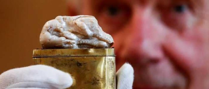 """""""الأسد النائم"""" للبيع بنصف مليون يورو"""