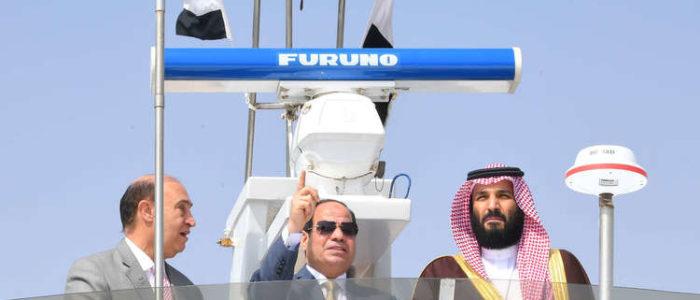 السعودية تنشئ مشروعا صناعيا عملاقا في مصر