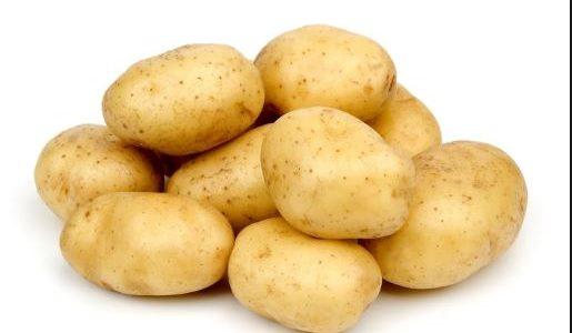 """بورصة البطاطس.. الغربية بالمقدمة في الانتاج.. و""""الأسبونتا والكارا والدايمونت"""" أشهر الأنواع"""