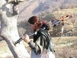 المرأة الكردية.. من أين وإلى أين؟..لماذا التنظيم النسائي الخاص؟