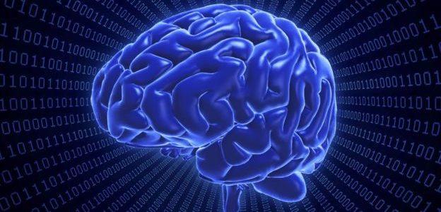 إصلاح خلايا المخ