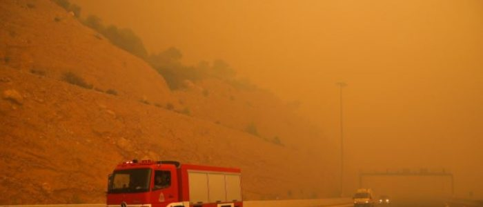 49 فتيلا في حرائق غابات اليونان