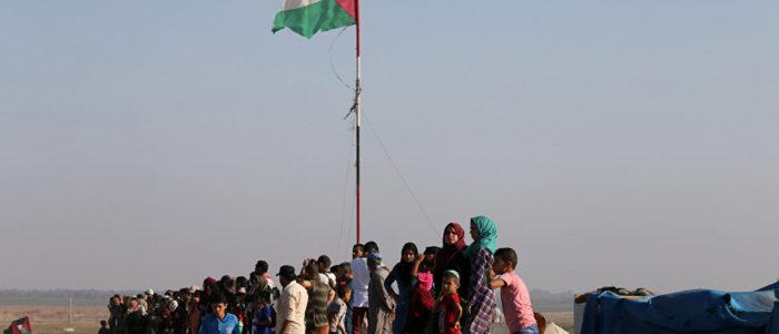 عملية عسكرية موسعة في غزة