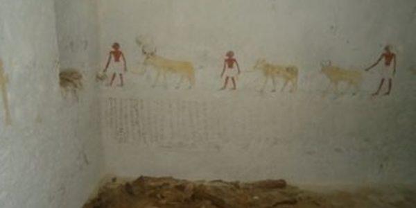 اكتشاف مقبرتين لكبار رجال الدولة الوسطى الفرعونية بالمنيا