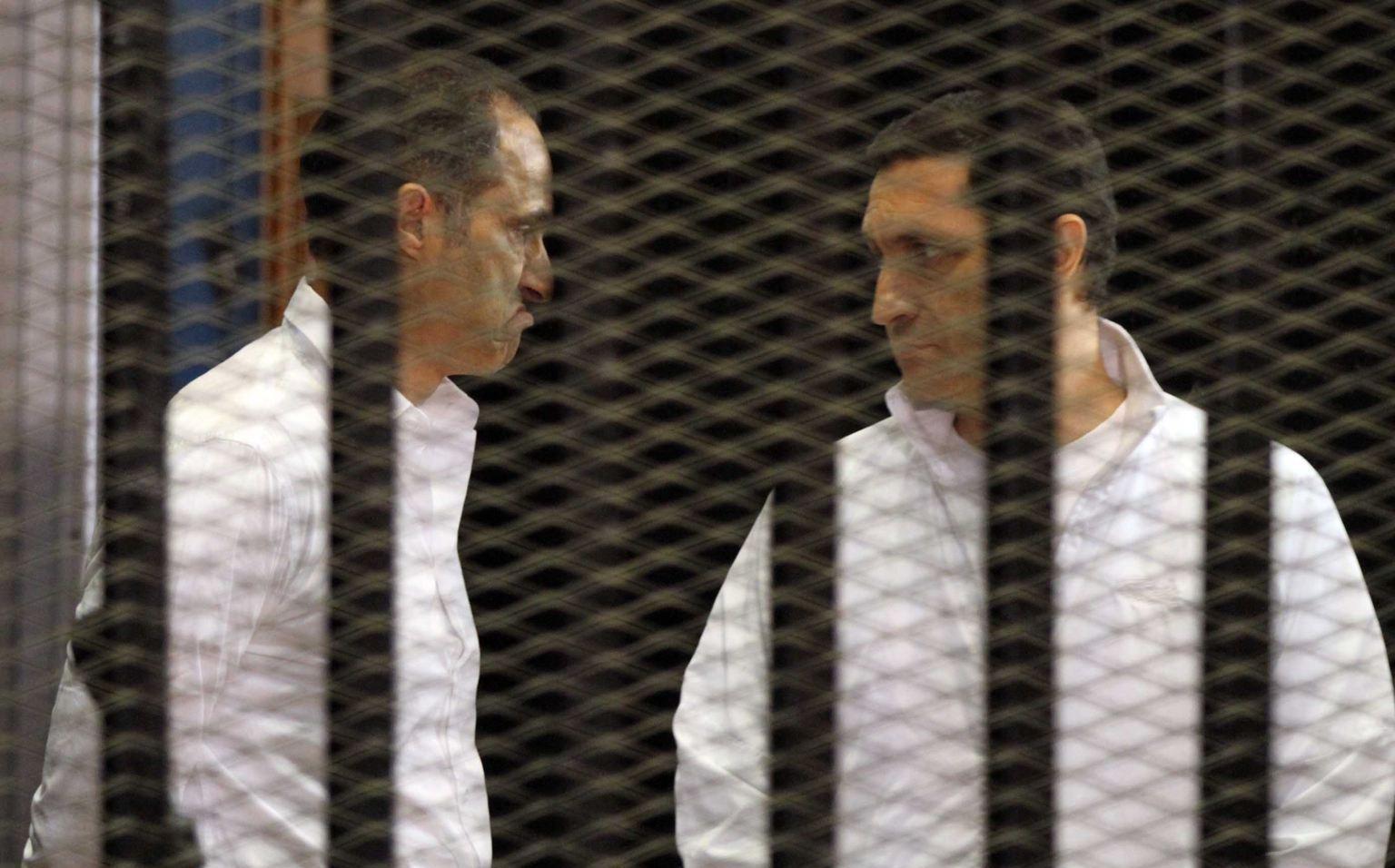 جمال وعلاء مبارك خلف القضبان مجدداً...جنايات القاهرة تقرر حبسهم على ذمة التحقيق