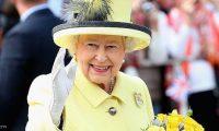 انتشار الفئران بقصر باكنجهام يصيب الملكة اليزابيث بالذعر