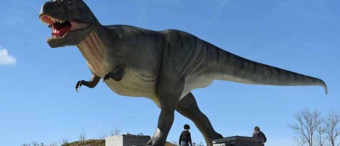 """دراسة تكشف السر وراء قصر يدي """"أشهر ديناصور"""""""