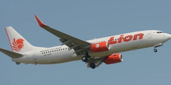 تحطم طائرة تحمل 188 راكبا في عرض السواحل الإندونيسية