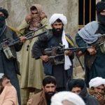 وفد طالبان فى محادثات قطر سيضم نساء