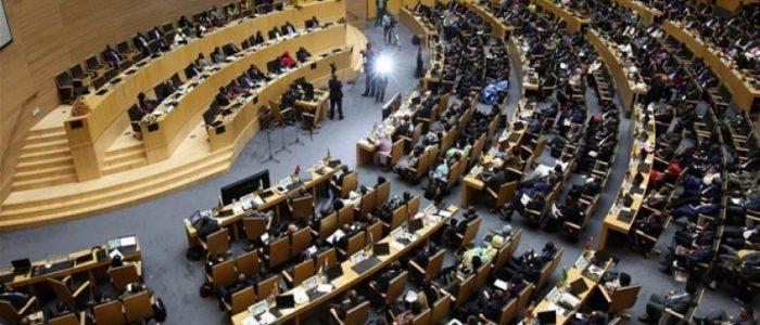 رئاسة مصر للاتحاد الإفريقي ثمرة نجاح سعيها لاستعادة دورها التاريخي في القارة السمراء