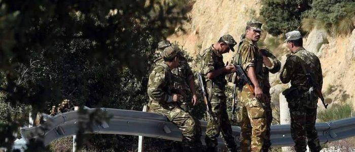 """خلية داعشية استغلت """"أرقام المجانين"""" للتجنيد بالجزائر"""