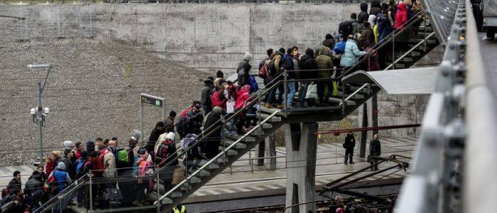 الدنمارك تخطط لاحتجاز اللاجئين بجزيرة نائية استُخدمت لعزل الحيوانات المُعدِية