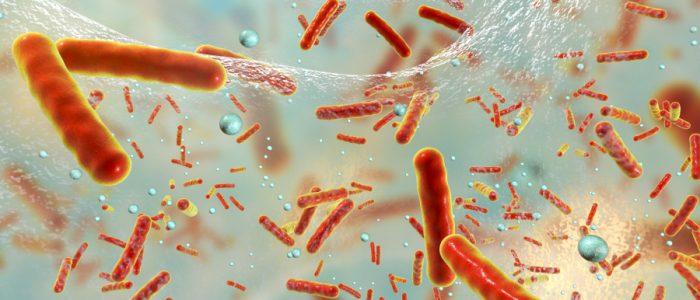 عُلماء يقترحون تشييد قبو للجراثيم تحسباً لنهاية العالم