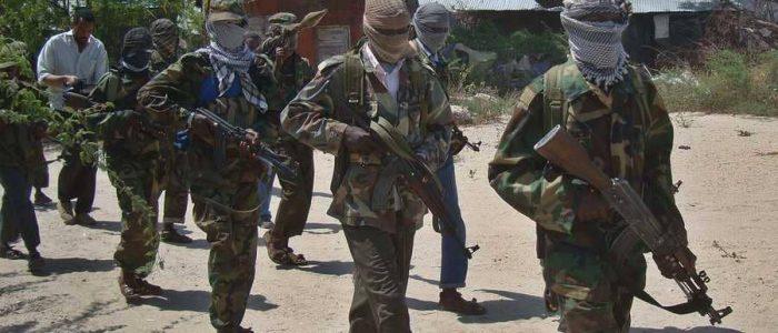 حركة الشباب الصومالية ما تزال قادرة على تصدير الإرهاب