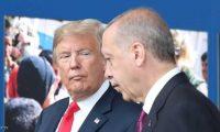 Middle East Eye: ترامب يرفض دعم أردوغان في إدلب لكنه سيضغط على الناتو لمساعدة تركيا