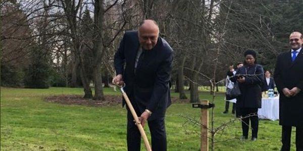وزير الخارجية يغرس شجرة باسم مصر فى حديقة فارملى بإيرلندا