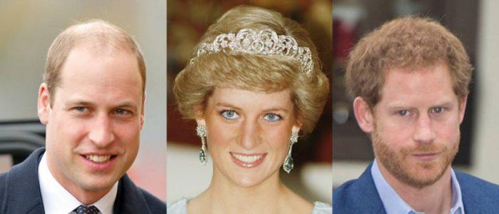 من سيصبح الملك الأمير هاري ام وليام؟ ..فيلم وثائقي مع الأميرة ديانا يكشف عن ملك بريطانيا المستقبلي