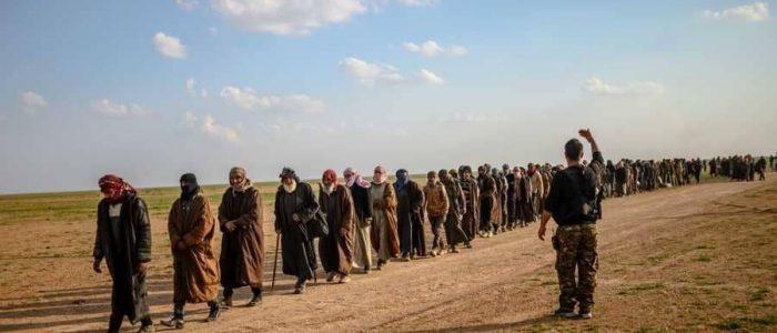 العراق يتسلم دفعة ثانية من مسلحي داعش المعتقلين في سوريا
