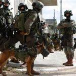 إصابة ثلاثة فلسطينيين برصاص جيش الاحتلال في الضفة الغربية