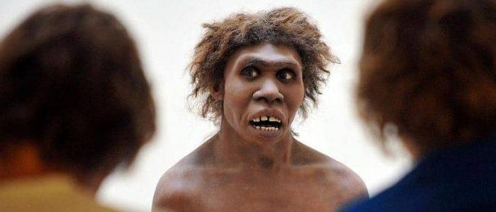 دراسة تكشف سبب تقلص وجه الإنسان