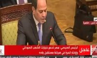 نص كلمة السيسى بجلسة افتتاح اجتماع القمة للشركاء الإقليميين للسودان