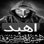 """""""جيش الهَبْد الإلكتروني"""".. أحدث أسلحة المقاومة الفلسطينية"""
