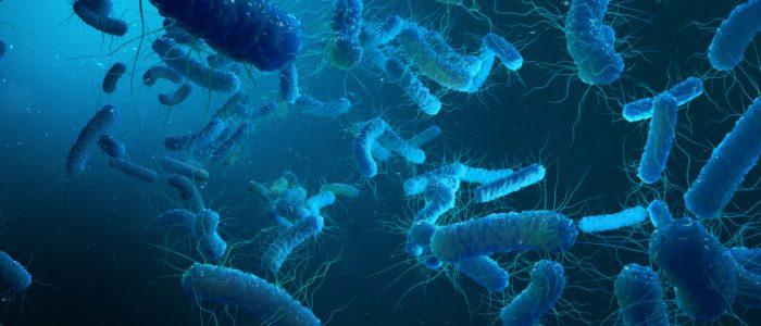 علماء من جامعة كامبريدج يصنعون أول كائن حي بحمض نووي مُعاد تصميمه