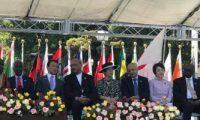 السفير المصرى فى اليابان يشارك فى الاحتفال بيوم أفريقيا