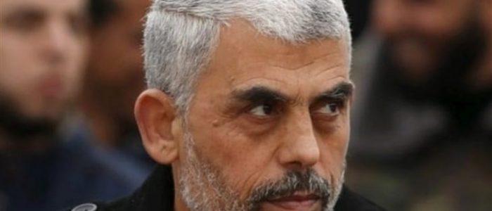 ما الذي تريده إسرائيل في قطاع غزة؟ ما هي سياستها؟