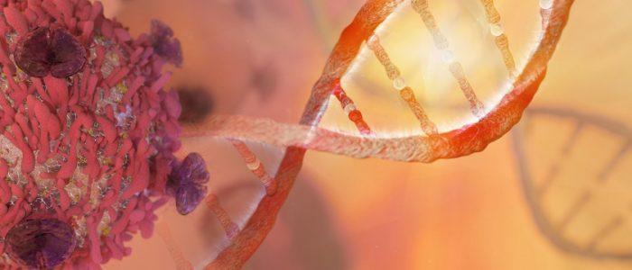 البكتيريا المبرمجة.. قد تكون الحل المستقبلي للقضاء على مرض السرطان