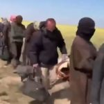 مقتل 4 إرهابيين فى قصف للتحالف الدولى فى محافظة نينوى بالعراق