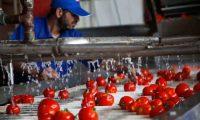 مصانع غزة الغذائية تشكو منع تصدير منتجاتها