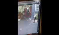 اعتقال مواطن فلسطيني حاول خنق موظف إسرائيلي على معبر الكرامة