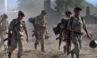 الجيش الجزائرى يضبط مخبأ للإرهابيين و3 قنابل شمال شرقى البلاد
