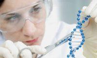 عالم مصري يكتشف طريقة جديدة لمواجهة التشوهات الجينية