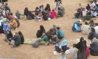 هل يتحول مخيم أبو الهول إلي بؤرة لولادة داعش من جديد؟