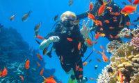 أفضل 9 أنشطة مائية في مصر