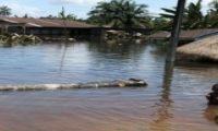ارتفاع حصيلة ضحايا الفيضانات في مدغشقر إلى 21 قتيلًا و20 مفقودًا