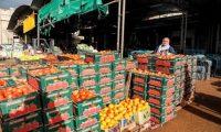 إسرائيل تتراجع عن قرار منع تصدير المنتجات الزراعية الفلسطينية