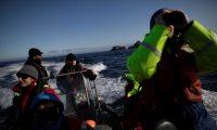 قارة أنتاركتيكا لا تعرف كورونا