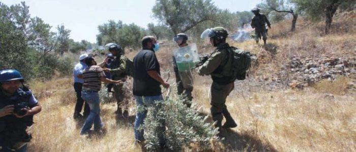 «فتح» و«حماس» تتفقان على إقامة مهرجان في غزة لمواجهة خطط الضم