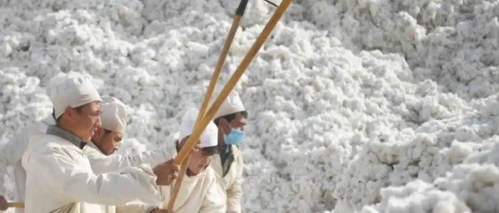 """كلهم متواطئون"""" ضد المسلمين الإيغور.. 180 منظمة تتهم علامات تجارية عالمية بالتورط مع الصين في عمالة """"السخرة"""""""