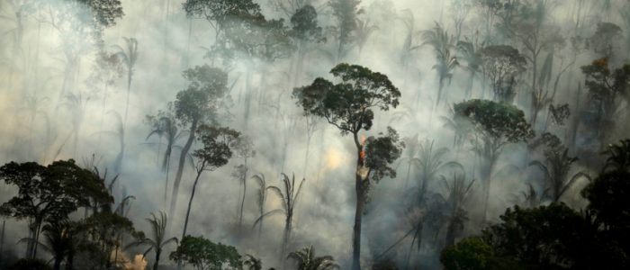 حرائق جديدة في غابات الأمازون بالتزامن مع بداية موسم الجفاف