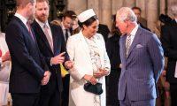 وثائق تكشف معاناة ميجان أثناء حملها.. شعرت بأن الأسرة المالكة لم توفر لها الحماية وأضرت بصحتها العقلية