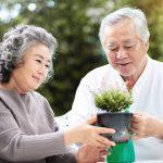 اليابان تسجل رقماً قياسياً جديداً في عدد المعمرين الذين تجاوزوا عامهم المئة