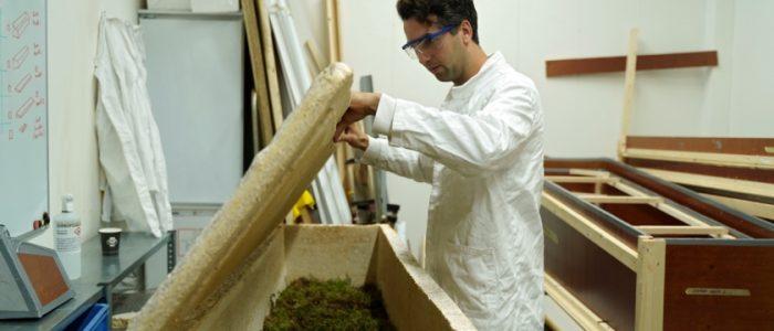 ابتكار نعش يحوّل الجثمان إلى غذاء للنباتات